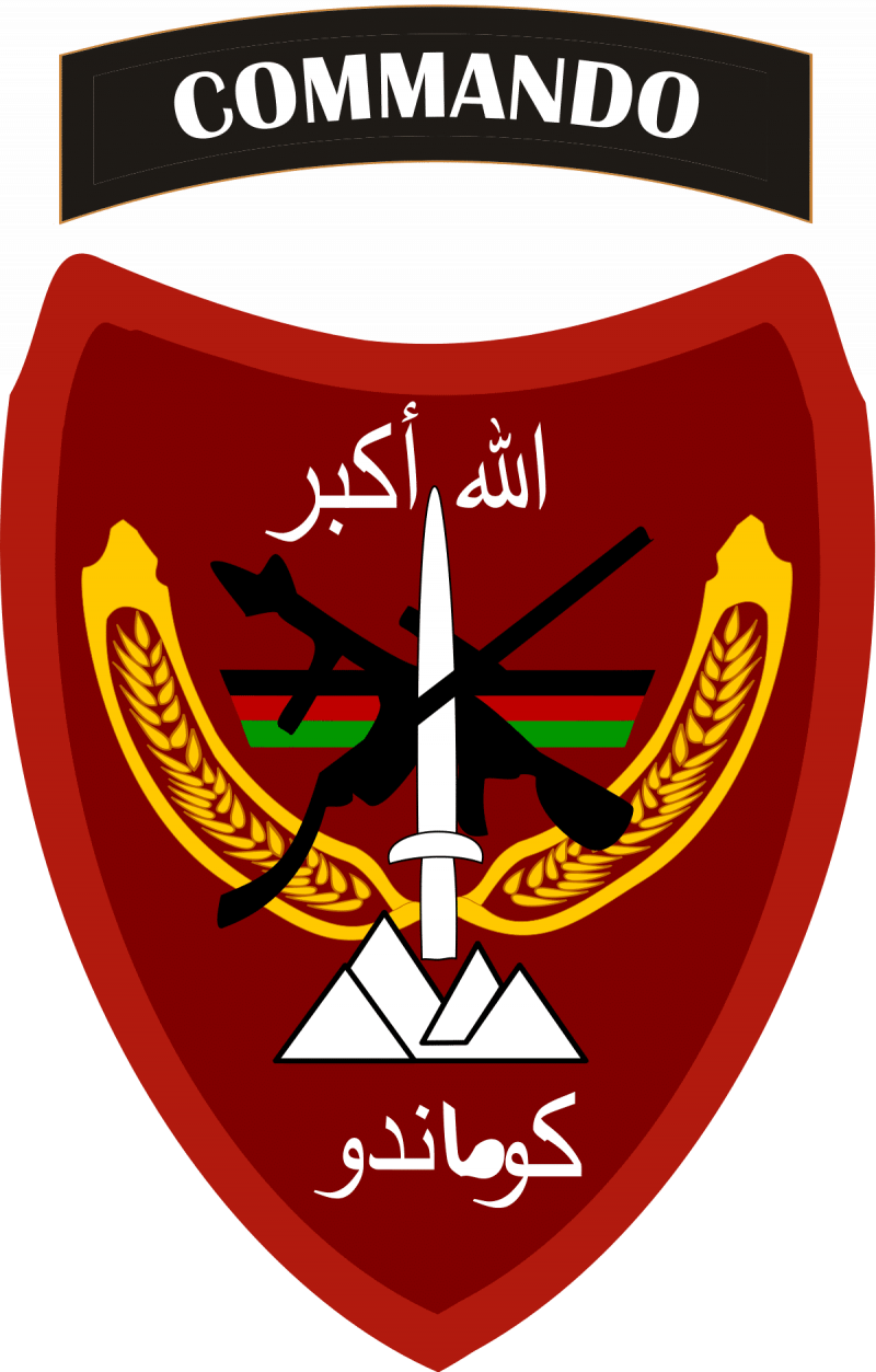 Afghan National Army Commando Corps Patch Insignia (ANACDO, ANA Commando)