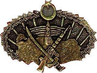 Turkish Special Forces  Command insignia worn by OKK