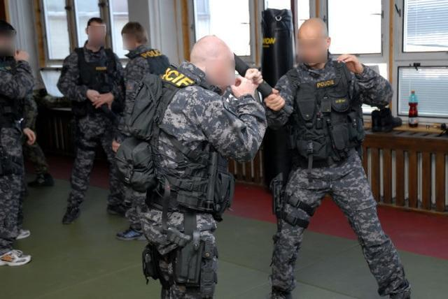 Czech Republic URNA operators practicing hand-to-hand combat