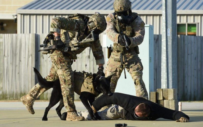 Tactical Assault Group (TAG) 2020 image