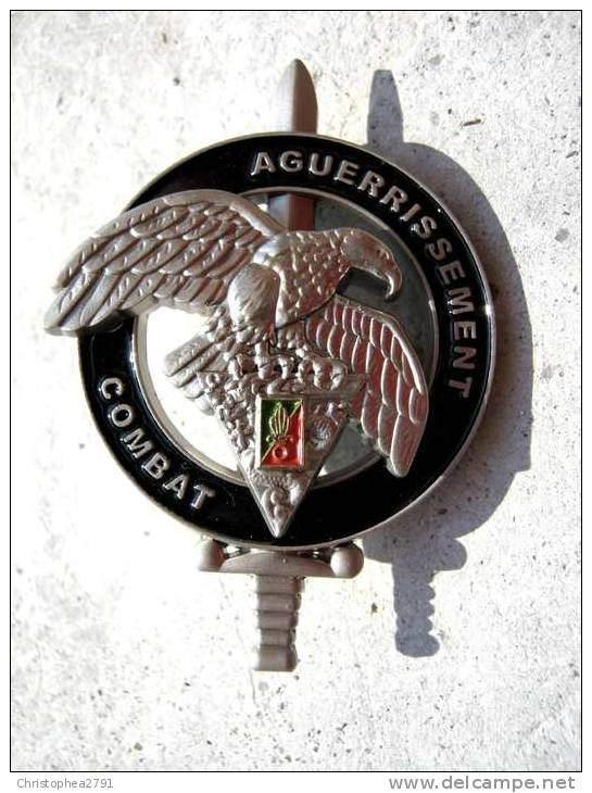 Aguerrissement Combat: Among many other highly valuables, GCP specialists are holders of this badge, which they earn by completing a course of advanced training in endurance and combat capability.