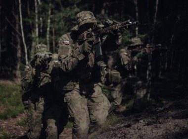 More rifles and pistols for Polish Armed Forces 2020 image