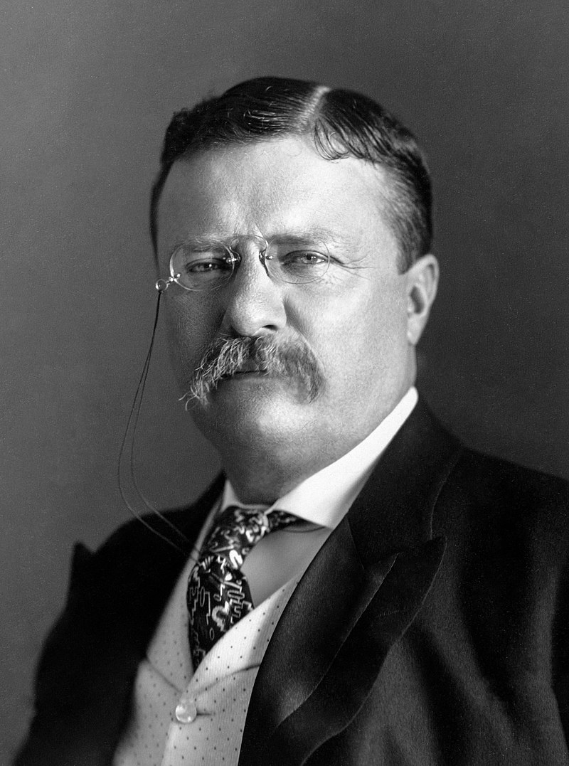 Photograph of U.S. President, Theodore Roosevelt from 1904.