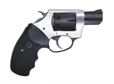 Charter Arms Pathfinder 22 Long Rifle revolver