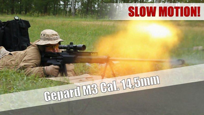 Gepard M3 Destroyer Sniper Rifle