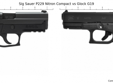 Which one is better: Glock 19 vs SIG P229?