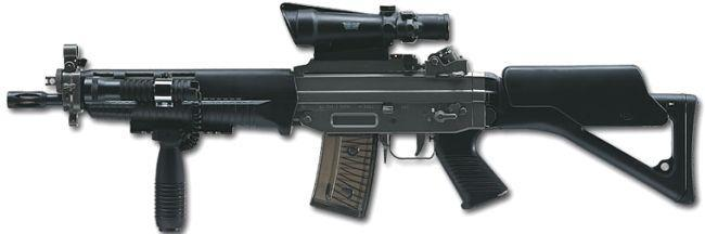 SIG SG 550 with additional gadgets installed